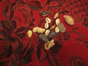 shell divination