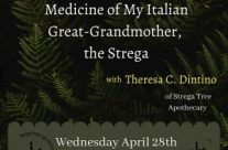 Join me for this online event:  Ancestral Herbs and Tree Medicine of My Italian Great-Grandmother, the Strega